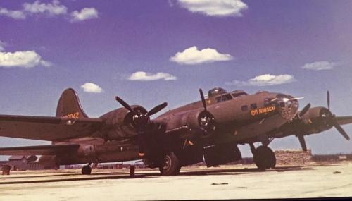 B-17 #42-30042 / Shack Rabbits aka Oh Nausea