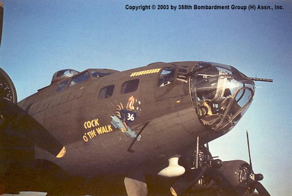 B-17 #42-30800 /  Cock O' The Walk