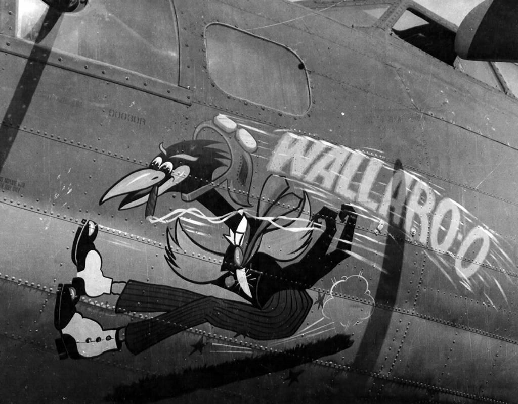 B-17 #42-3029 / Wallaroo