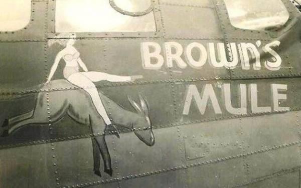 B-17 #42-5986 / Brown's Mule
