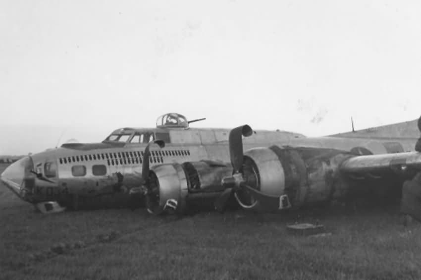 B-17 #42-107034 / Rampant Pansy