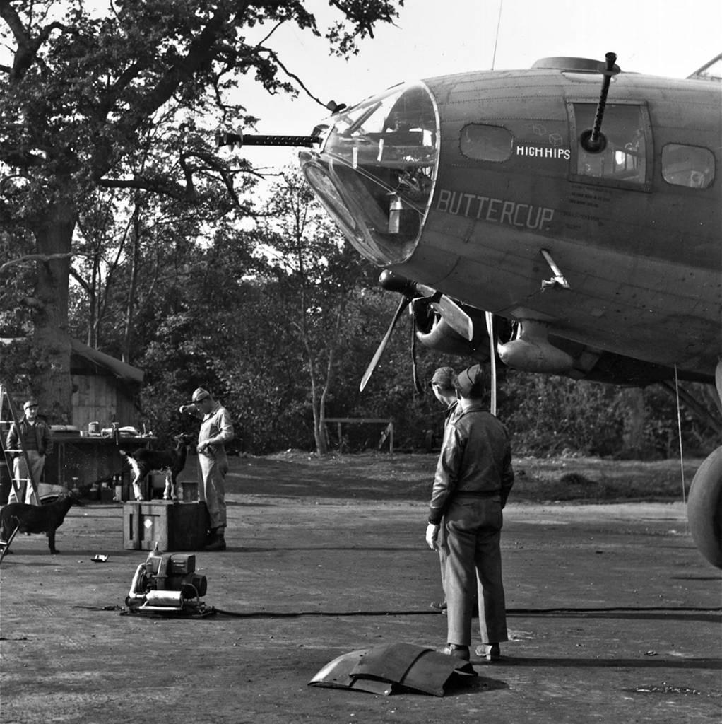 B-17 #42-3142 / Buttercup