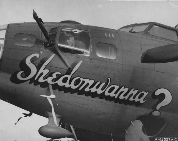 B-17 #42-30201 / Shedonwanna?