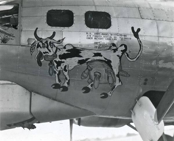 B-17 #43-38019 / Milk Run Special