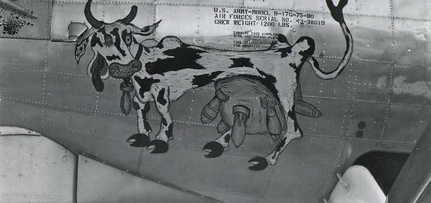 Boeing B-17 #43-38019 / Milk Run Special